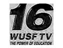 WUSF TV